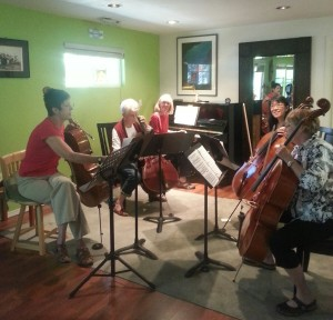 Learn cello with Deborah Ann Johnston's ensemble classes